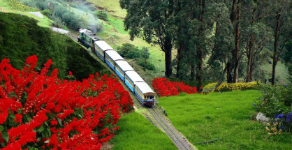 Ooty Holidays