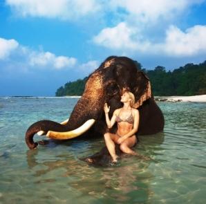 Andaman Tours